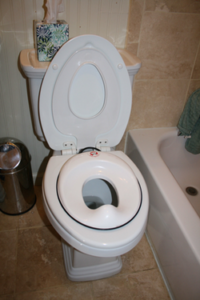 Bjorn seat two-day method of potty training