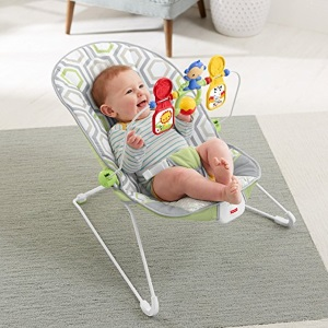 db3a8f11d84 The Best Baby Bouncers and Swings  Get the Lowdown on What You Need ...